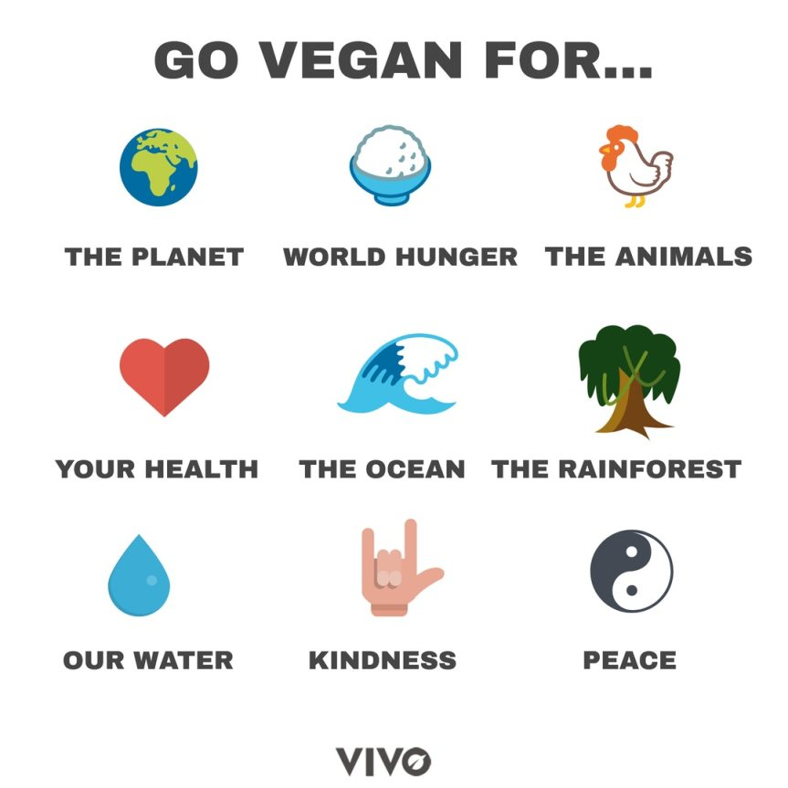 Going Vegan: Keep Calm & Lead by Example + Tips